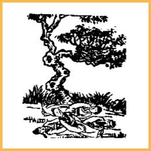 推背圖 》千百年第一正解 : 「讖頌圖預言」全文重編排序版《推背圖》第九象【黃巢夢醒皆成空】
